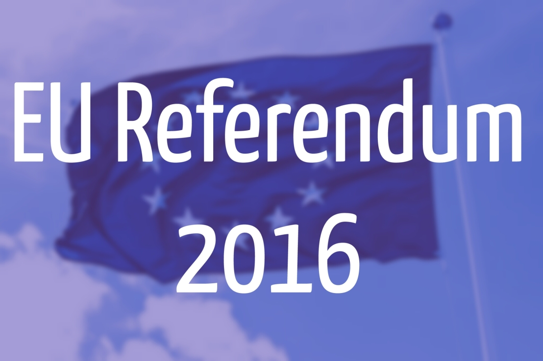 EU Referendum 2016 graphic